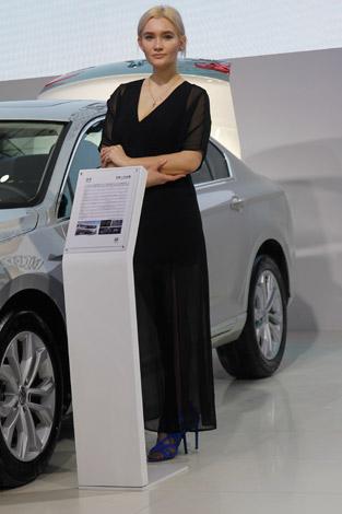 2017齐鲁国际车展美女车模