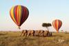 """去东非看""""动物世界""""大冒险"""