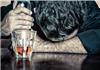 十个小问题测你是否有酒精依赖