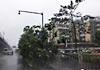 实拍台风天鸽登陆珠海 狂风肆虐